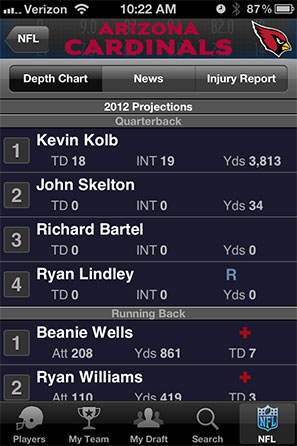 NFL Fantasy Cheat Sheet Screenshot 5