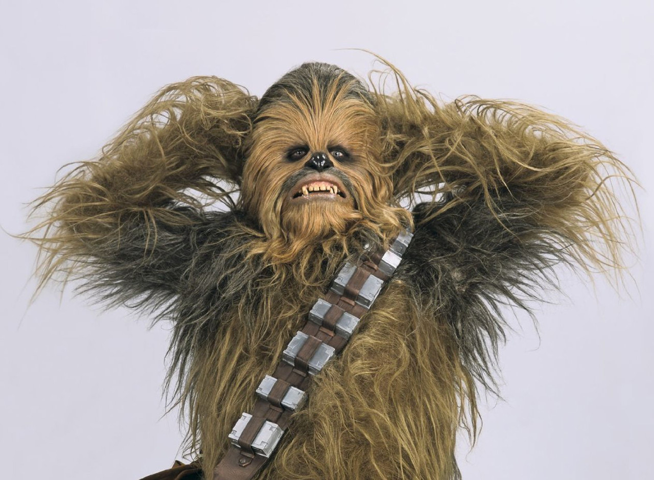 1. Houston Texans - Chewbacca