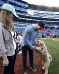 NFL players and their dogs