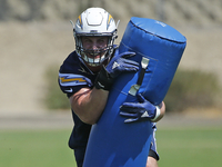 Image: Bosa 'ready to roll'