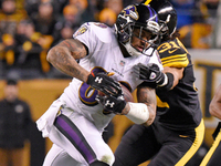 Steve Smith: My last NFL game probably will be Sunday