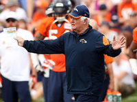 Los Angeles Rams to hire Wade Phillips as DC