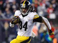 DeAngelo Williams: Cowboys fans are 'super annoying'