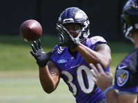 Ravens RB Kenneth Dixon suffered a meniscus tear