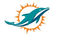 Dolphins owner pledges $1 million to hurricane relief