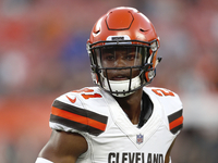 Browns DC: Denzel Ward's 'stupid' tackling resulted in wretchedness thumbnail