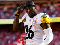 Steelers, Le'Veon Bell's agent replace barbs thumbnail