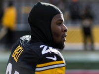 Raiders one of many expected to chase Le'Veon Bell thumbnail