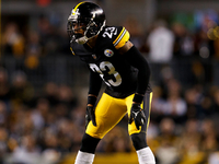 Haden: Tomlin can't be blamed for Steelers' drama thumbnail