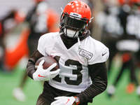 AFC North training camp preview: Time of transition at hand?