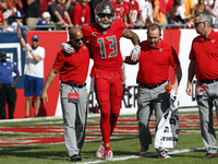 Bucs WR Mike Evans (hamstring) done for season thumbnail