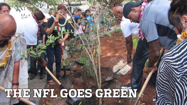 NFL Goes Green
