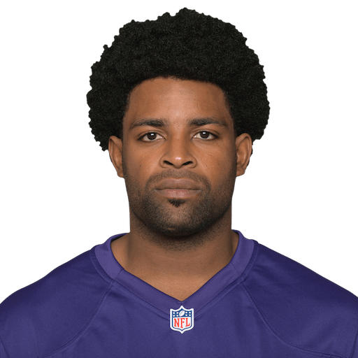 Michael Crabtree Wr For The Baltimore Ravens At Nflcom