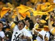 Watch: Steeler nation