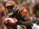 Watch: WK 10 Can't-Miss: A.J. Green schools Polamalu