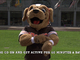 Watch: Play 60 Funny Files: Chomps