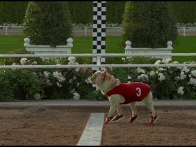 Watch: Underdog