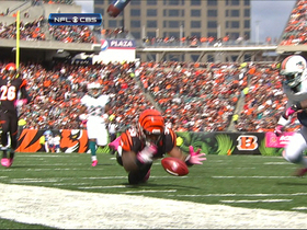 Video - Cincinnati Bengals linebacker Vontaze Burfict fumble recovery