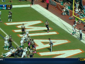 Video - Miami Dolphins tight end Anthony Fasano TD catch
