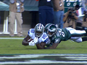 Video - Dallas Cowboys wide receiver Dez Bryant diving TD catch