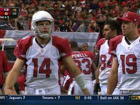 Video - Arizona Cardinals bench John Skelton