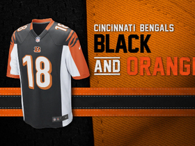 Video - Evolution of the Bengals colors