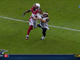 Video - St. Louis Rams wide receiver Danny Amendola diving 38-yard catch