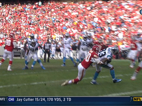 Video - Carolina Panthers QB Cam Newton throws 3rd TD