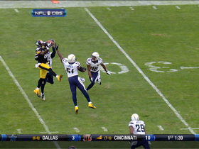 Video - Pittsburgh Steelers WR Plaxico Burress skies for first catch of season