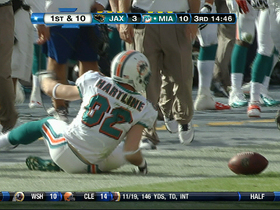Video - Miami Dolphins WR Brian Hartline 37-yard catch