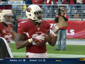 Video - Arizona Cardinals RB Beanie Wells scores second TD