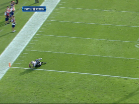 Video - New England Patriots WR Wes Welker 2-yard TD catch