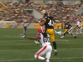 Video - Pittsburgh Steelers safety Polamalu picks off Young