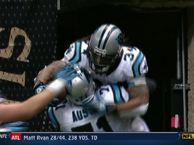 Video - Week 17: DeAngelo Williams highlights