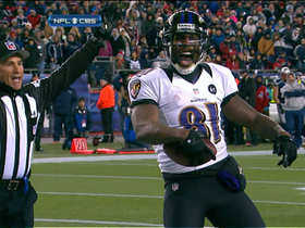 Video - AFC Championship Game: Anquan Boldin highlights