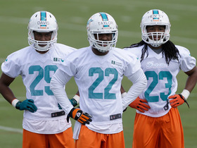 Watch: Are the Dolphins primed for success?