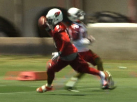 Watch: Patrick Peterson's amazing one-handed pick