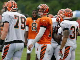 Video - Can Bengals win AFC North?