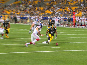 Video - Pittsburgh Steelers linebacker Adrian Robinson scores defensive touchdown