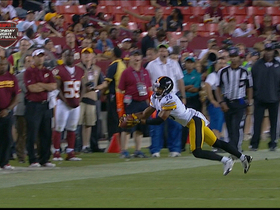 Video - Pittsburgh Steelers defensive back Devin Smith makes a diving interception