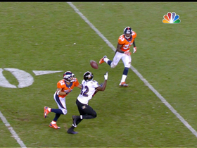 Video - Baltimore Ravens wide receiver Torrey Smith's one-handed grab