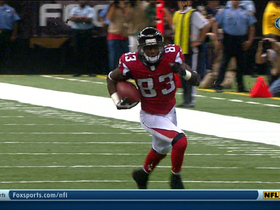 Video - Atlanta Falcons wide receiver Harry Douglas's 50-yard reception