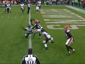 Video - Cleveland Browns wide receiver Davone Bess 1-yard touchdown catch on 4th and goal