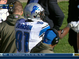 Video - Detroit Lions wide receiver Calvin Johnson 4-yard touchdown catch