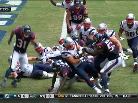 James Develin 1-yard touchdown run