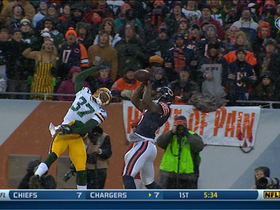 Video - Chicago Bears wide receiver Brandon Marshall 37-yard catch