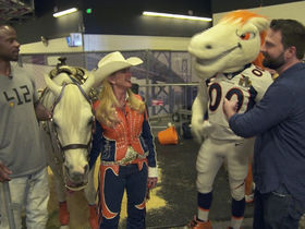 Watch: What the Broncos mascot is doing to prepare for Super Bowl 50