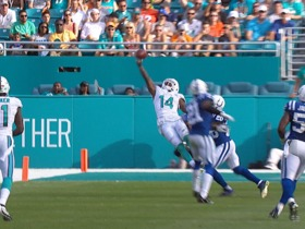 Watch: Dolphins Top 10 Plays of 2015