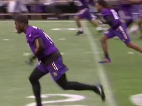 Which Vikings players to draft for fantasy