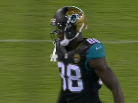 Watch: Blake Bortles drops pass into Allen Hurns for 24-yard TD